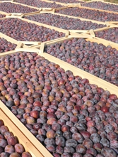 GRYPIOTIS ESTATE, SKOPELOS ORGANIC DRIED PLUMS