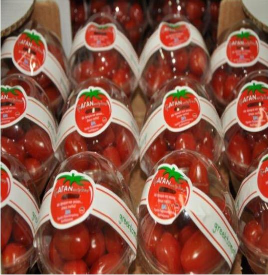 Ντομάτες από την ΑΓΑΝ