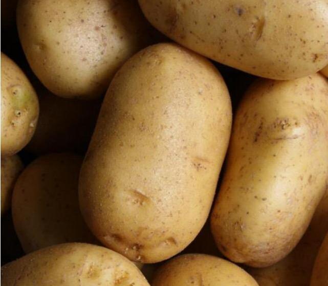 Εντός των ημερών η έγκριση για την πατάτα