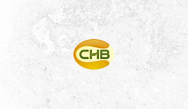 ΟΜΙΛΟΣ CHB