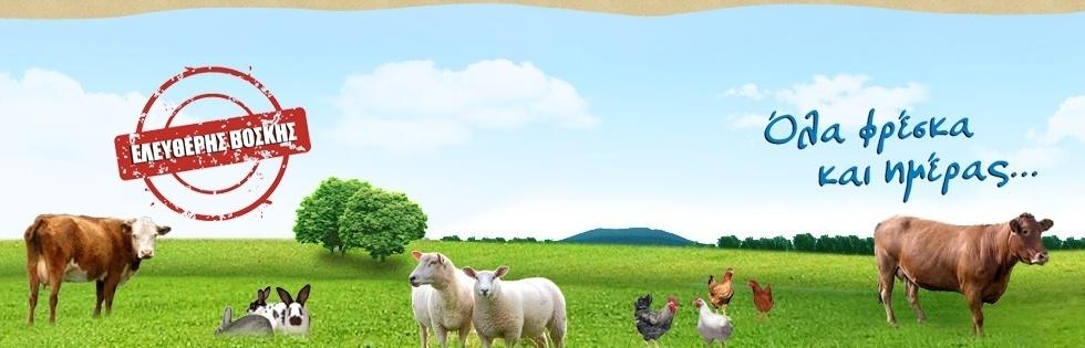 KATERINA FARM