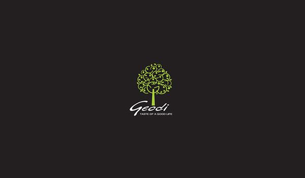 GEODI S.A