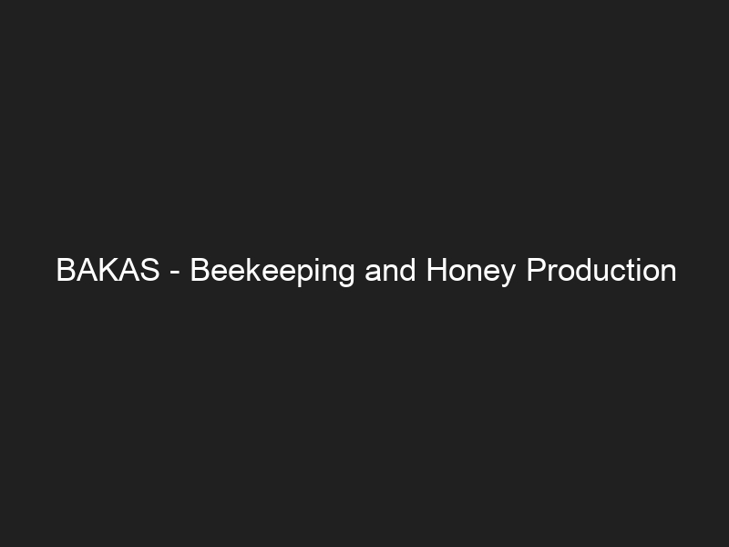 BAKAS – Beekeeping and Honey Production