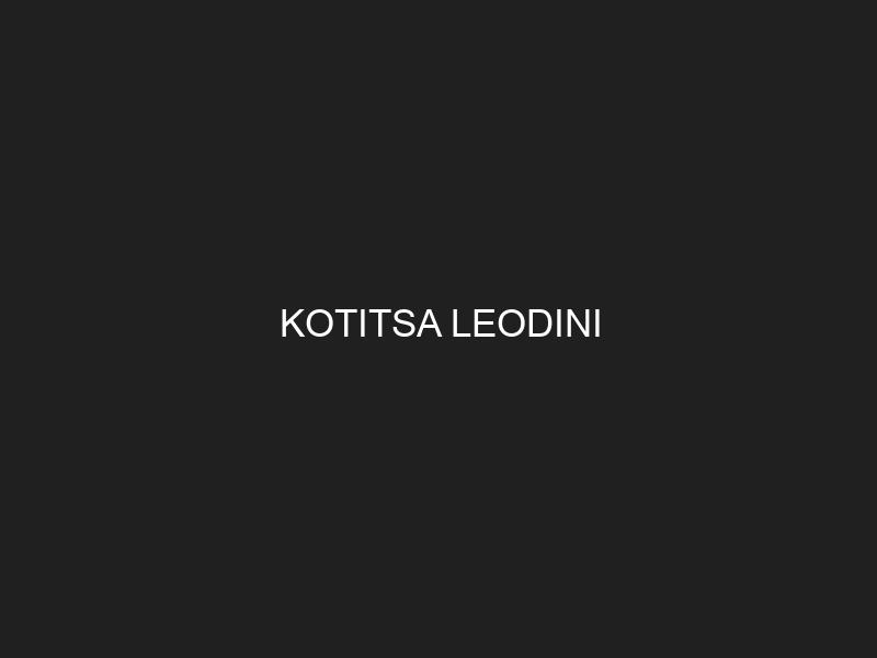 KOTITSA LEODINI