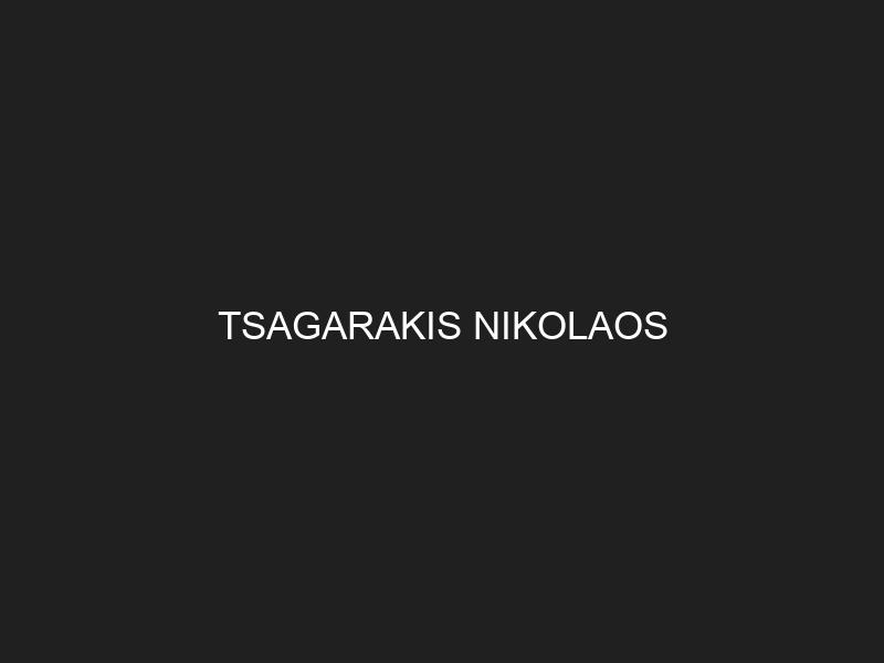 TSAGARAKIS NIKOLAOS